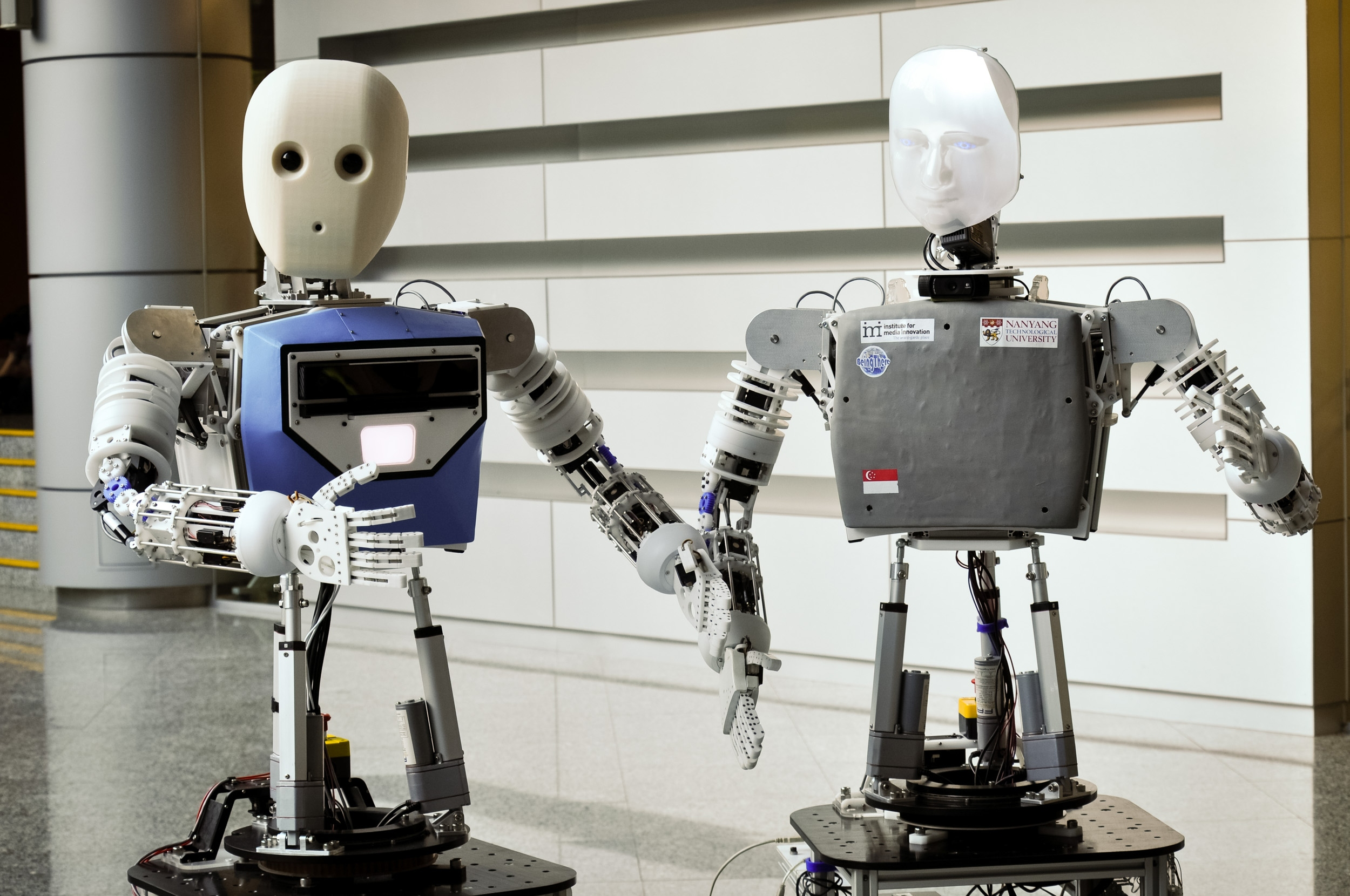 Meet your newest friend, nurse and carer: a robot who reads