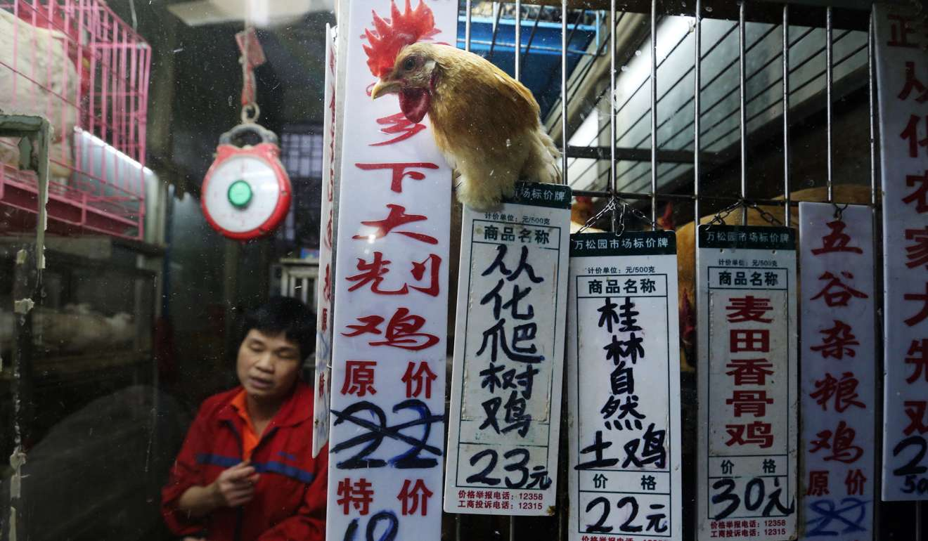 A live poultry vendor sells selling chicken in Haizhu district in Guangzhou in southern China's Guangdong province in this file photo from May 2014. Photo: K.Y. Cheng