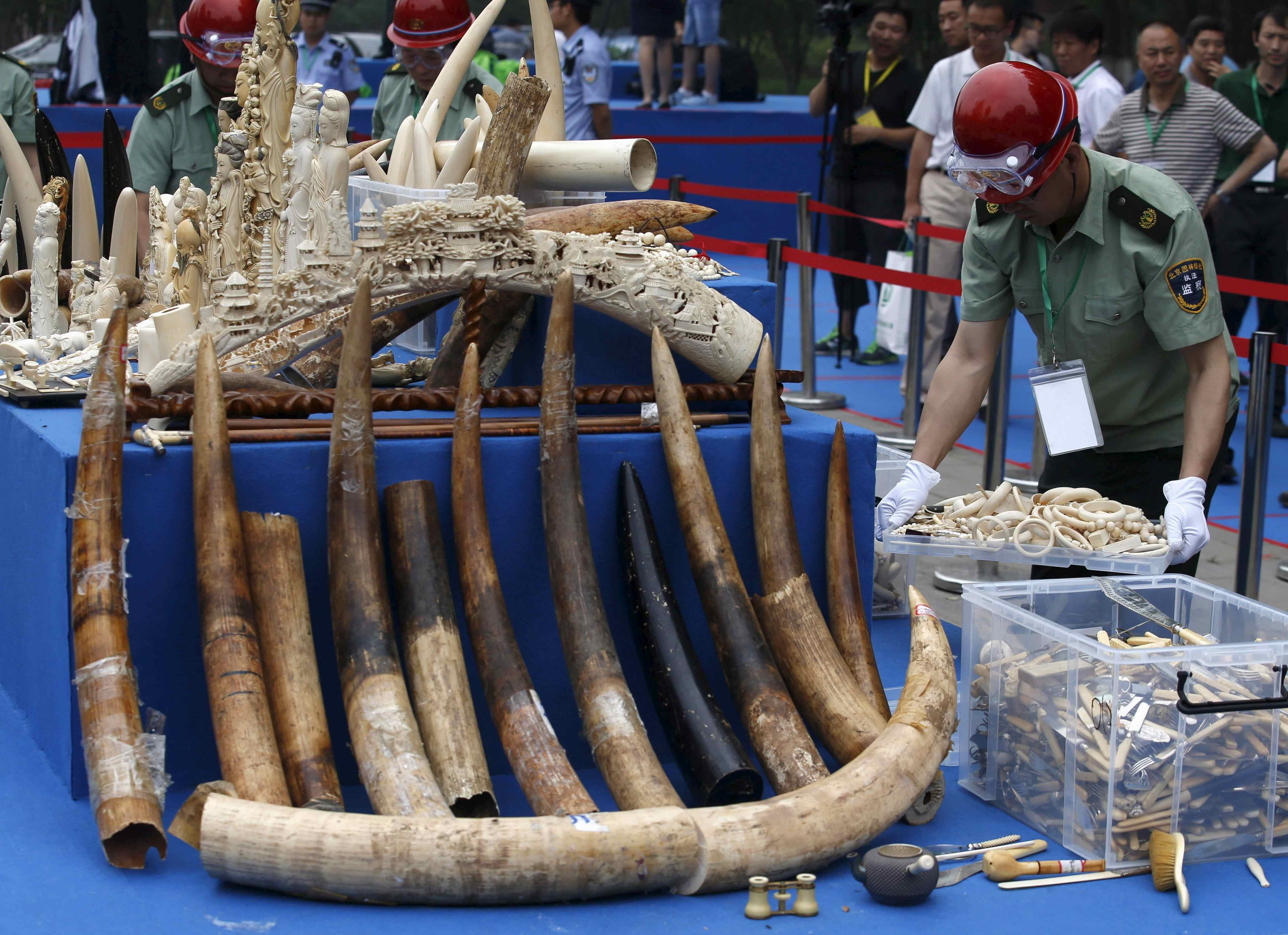 fb674e27e18c Mainland China ban on ivory sales to come into force on Sunday ...