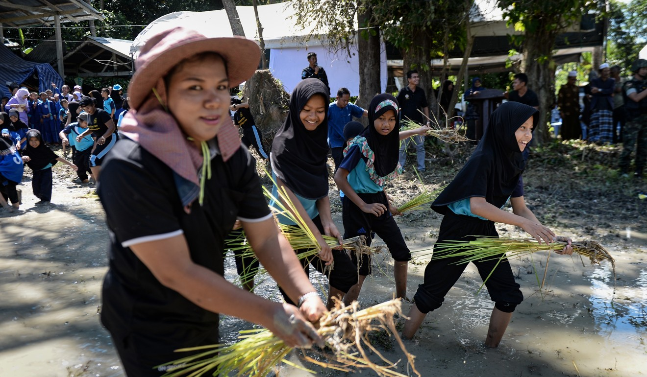 Thai Muslim and Buddhist schoolchildren work together to harvest rice during a multicultural gathering in Mai Kaen district in Thailand's restive province of Pattani. Photo: AFP