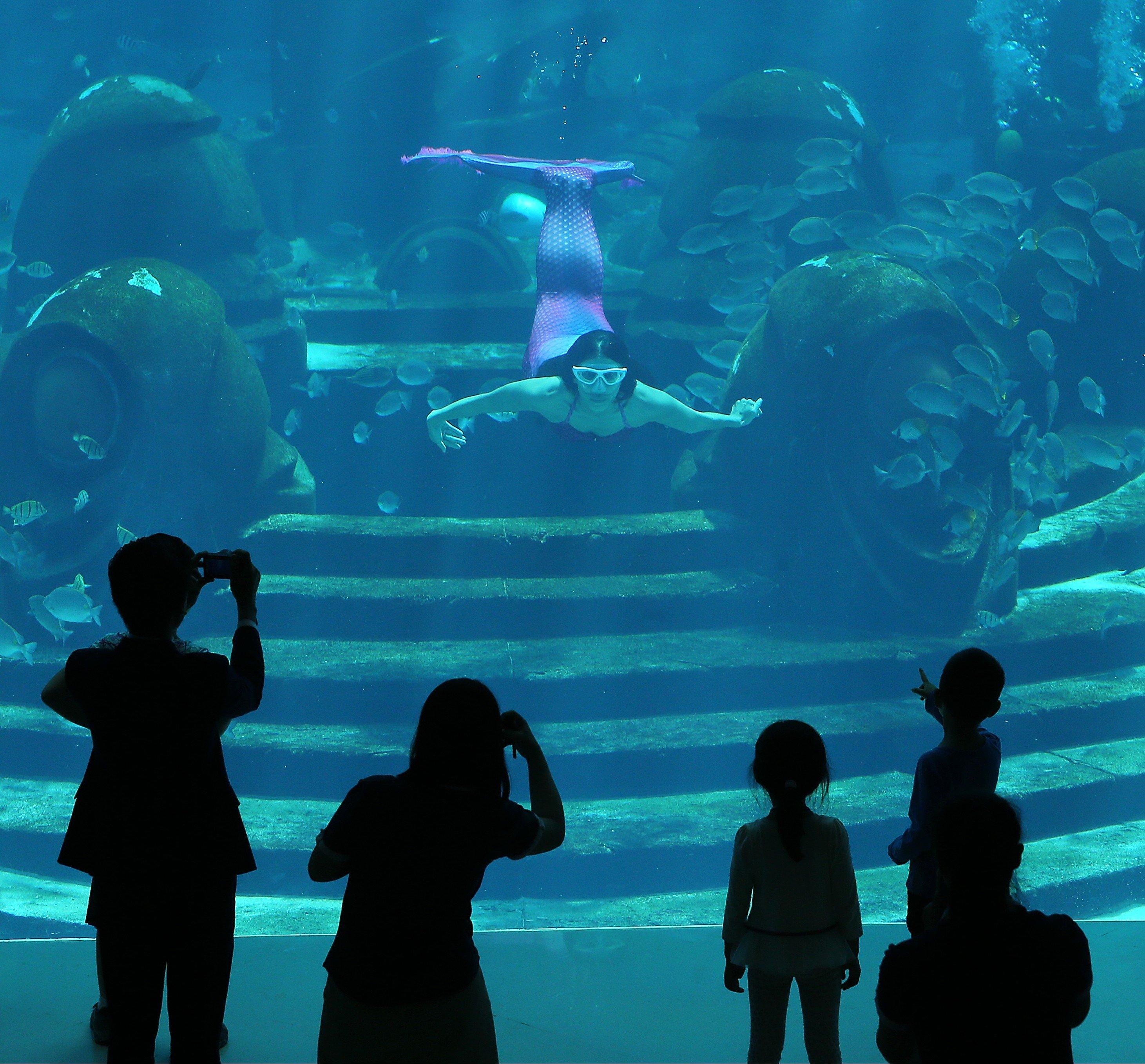 Atlantis Stake Anchor