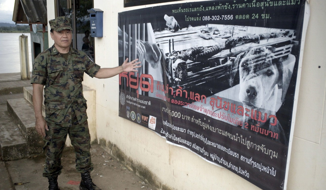 The Thai navy has set up special patrols to stem the smuggling of dogs into Vietnam. Photo: World Dog Alliance