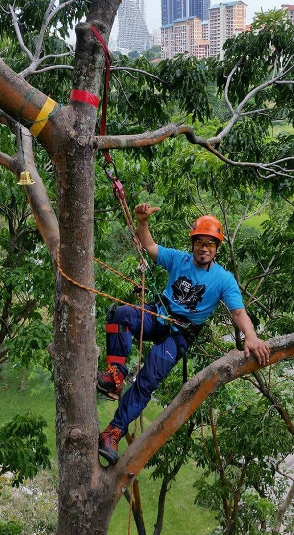 International Tree Climbing Championship: Hongkongers head to Ohio