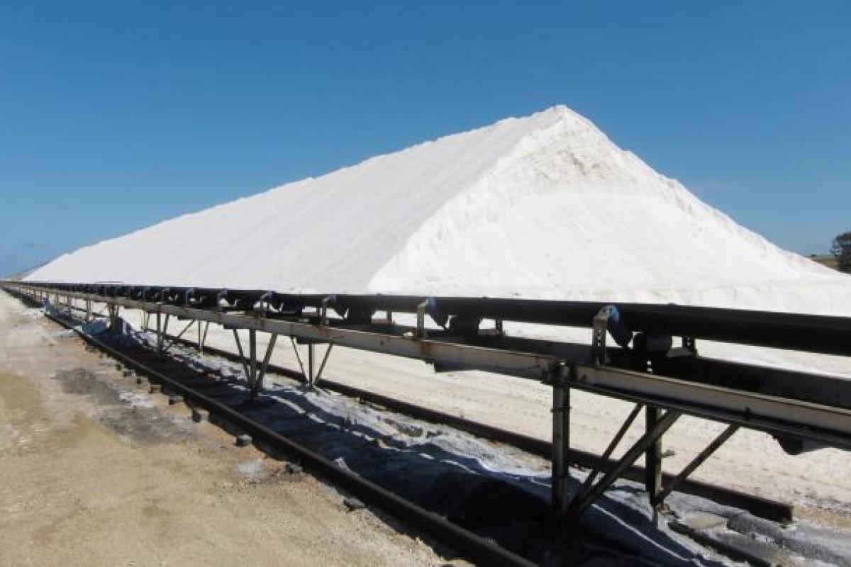 Escort girls As Salt