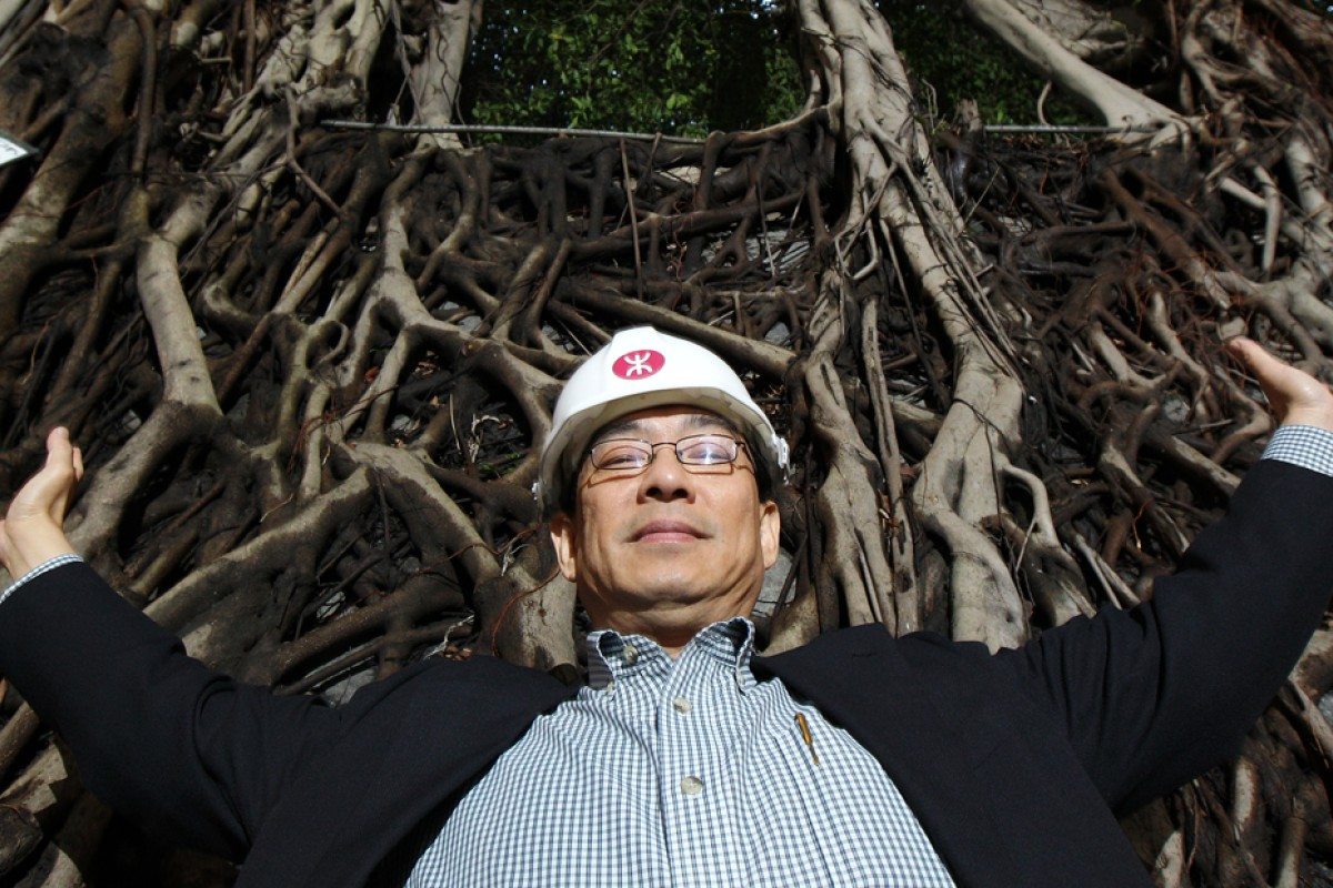 Expert calls for root-and-branch reform on heritage tree