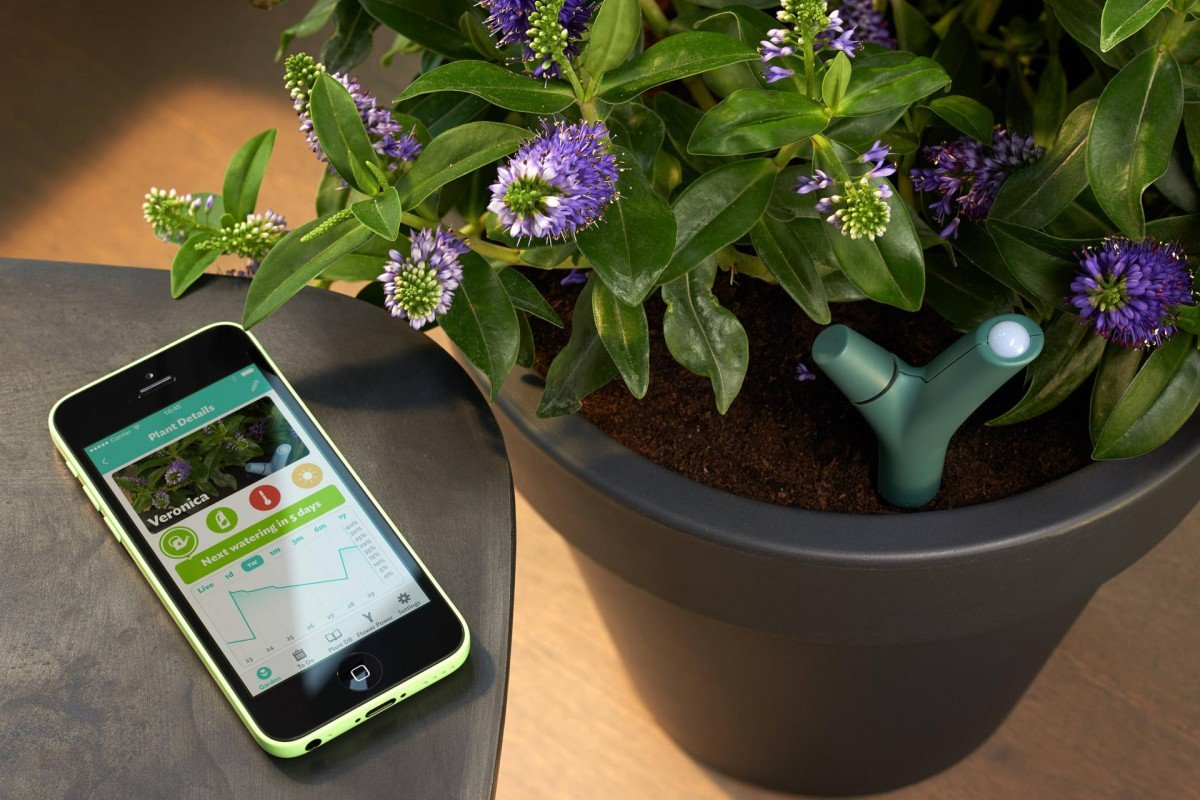 Something new: Gardening with gadgetry | South China Morning Post