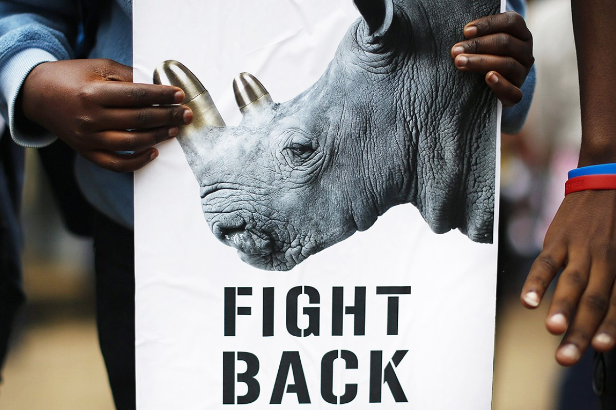Trafficking of African rhinoceros horn on the black market