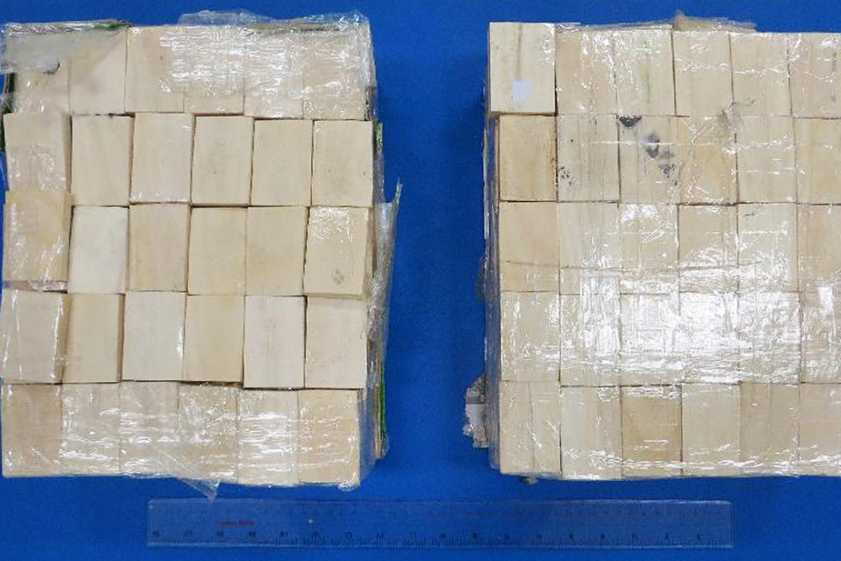 Hong Kong customs officers seize 36kg of suspected cut ivory