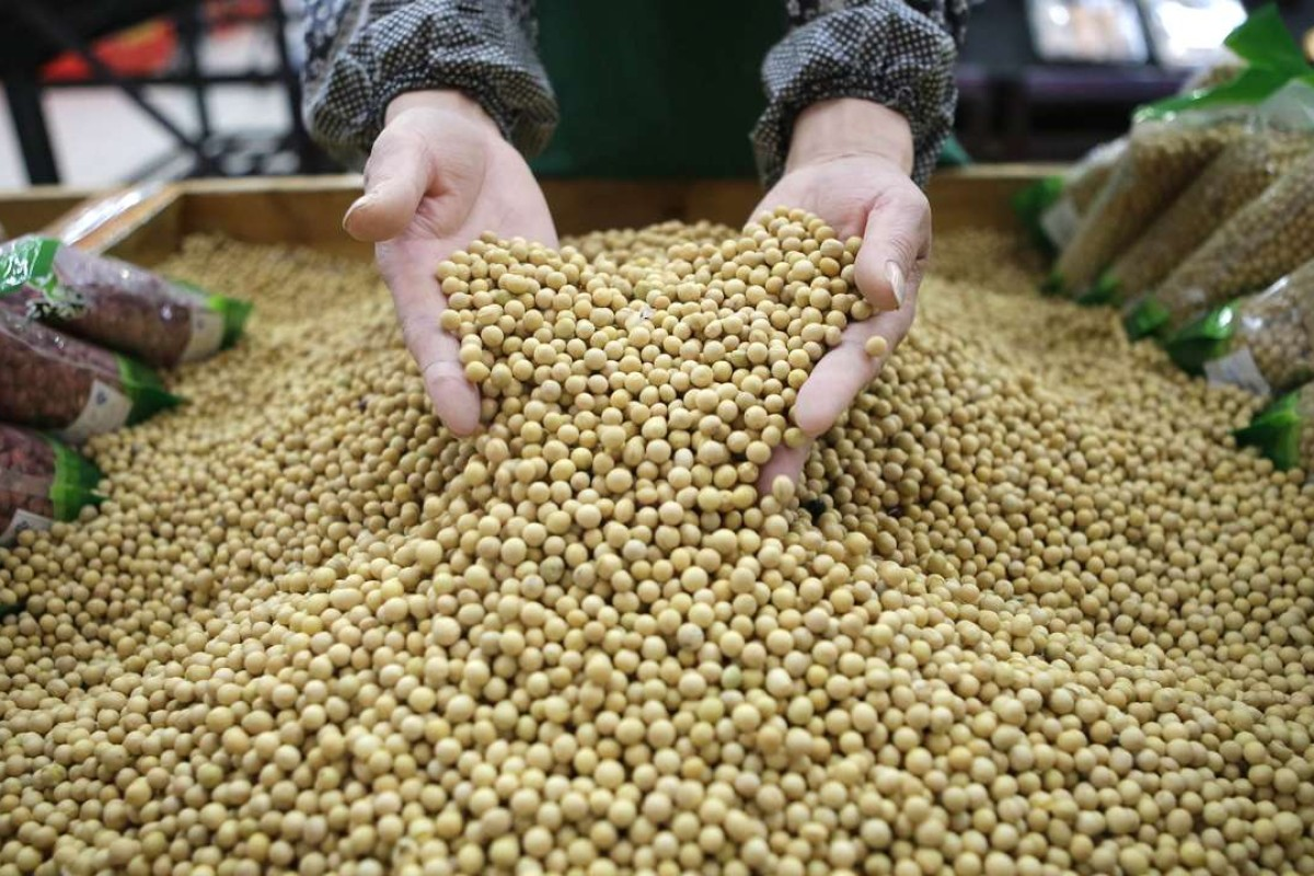 China's massive soybean imports eating into record US bean crop ...