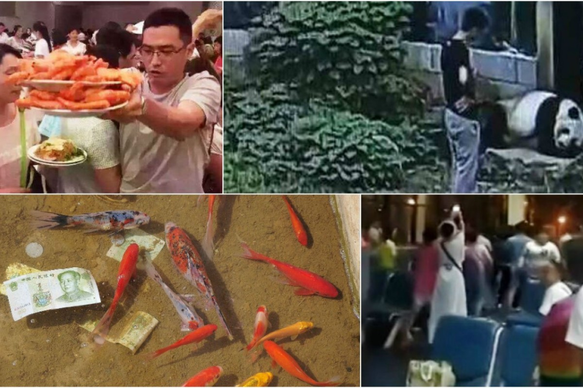 42 times tourists were caught behaving badly   South China
