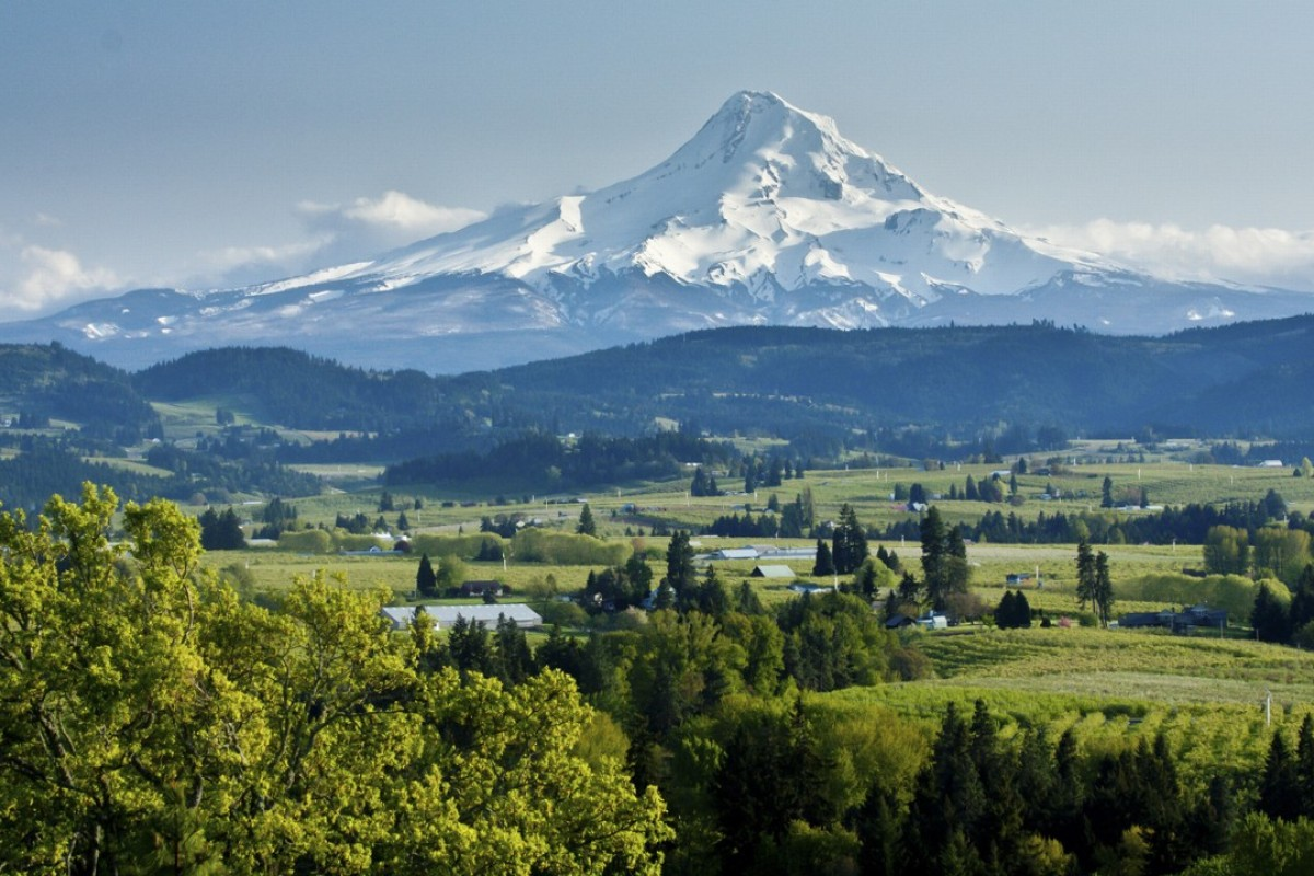 In Pacific Northwest, wines for adventurous drinkers that offer something different