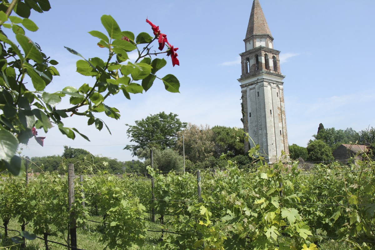 Get Away From It All In Venice At Luxury Vineyard Refuge