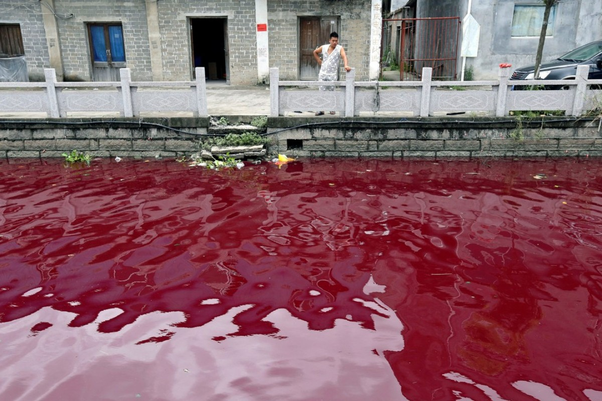 Image result for South Korean river turns red after being polluted with pigs' blood