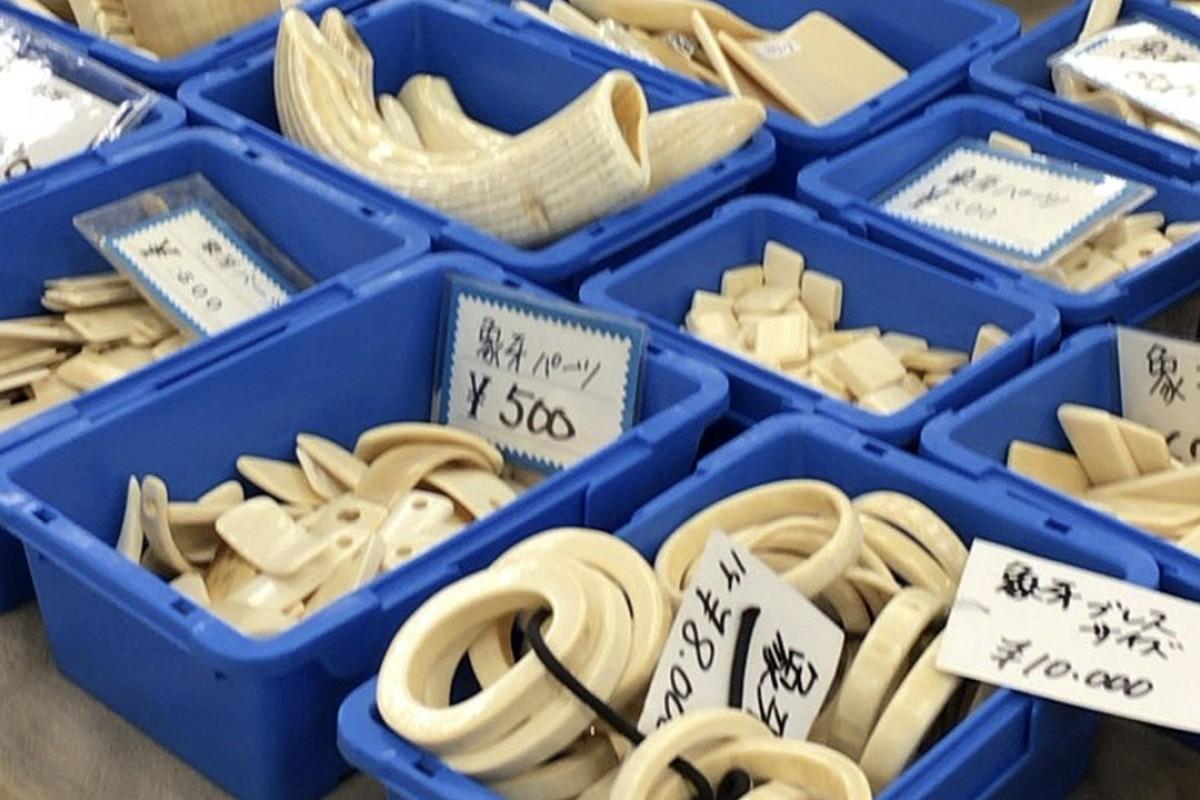 eb0fd883e6bd Japan has resisted closing its own domestic market. Photo  AP