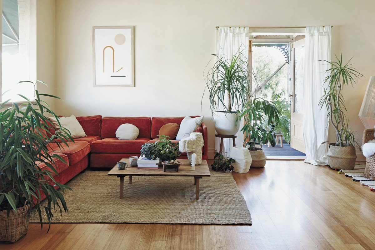 make living room spacious using simple and smart tricks best interior design services Not only can plants improve a homeu0027s looks, they are good for health and  help