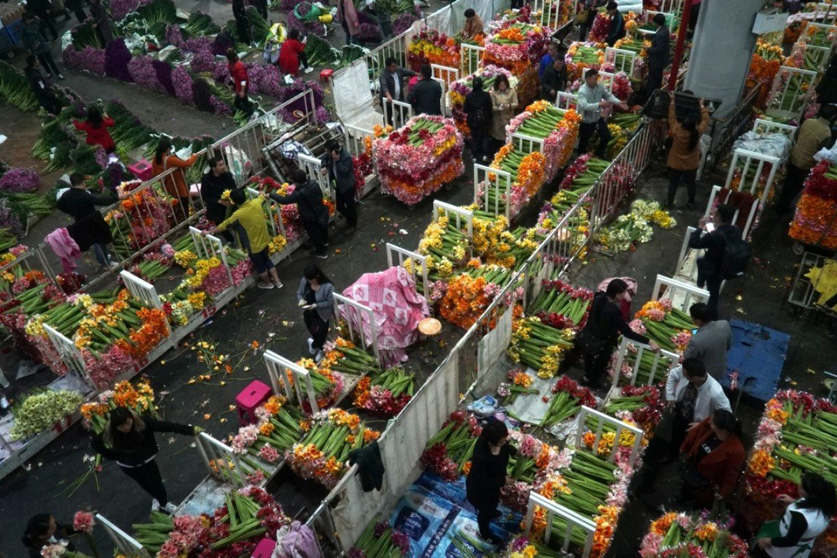 The giant Chinese flower market aiming to be a blooming