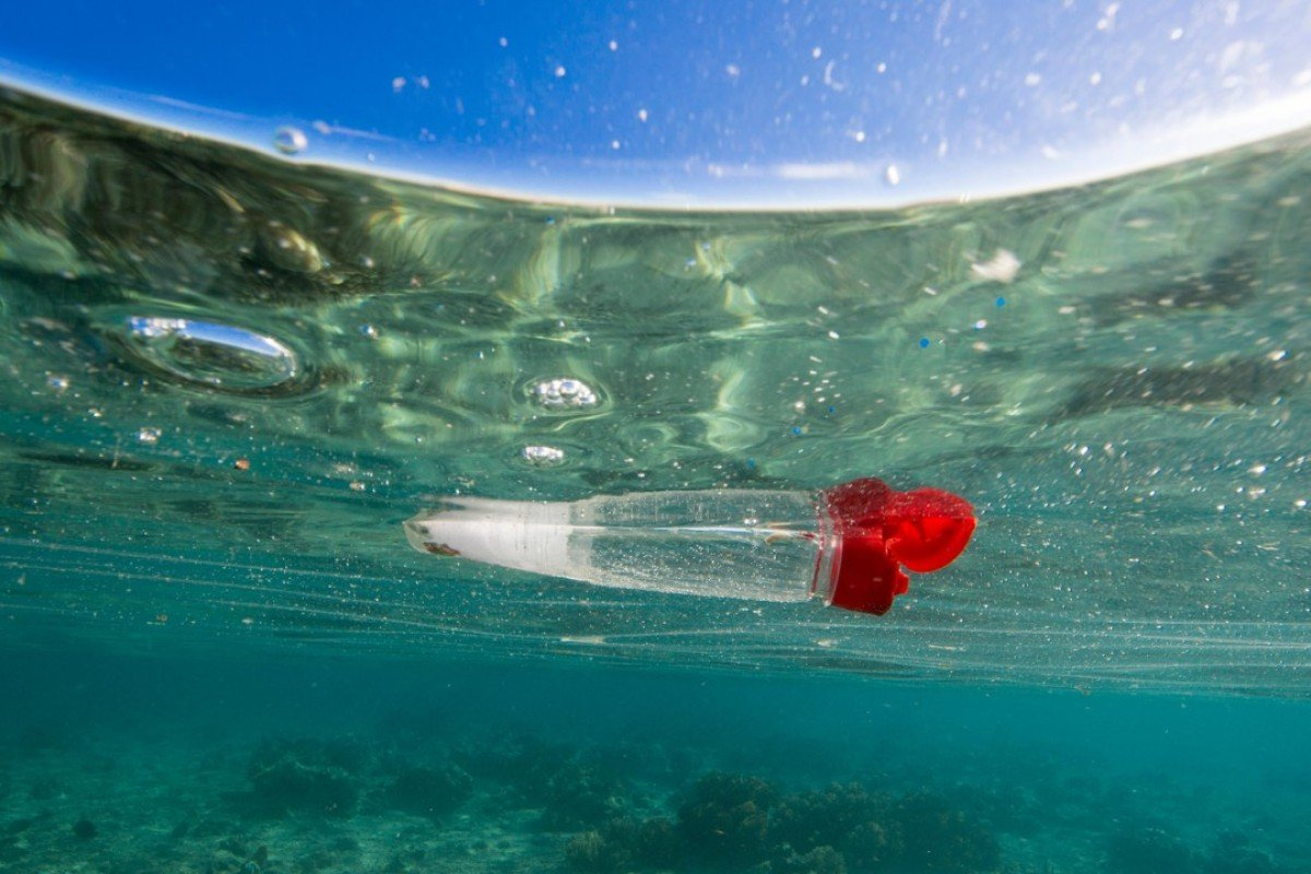 Four Ways Plastics Are Killing Marine Life And Reaching The Oceans