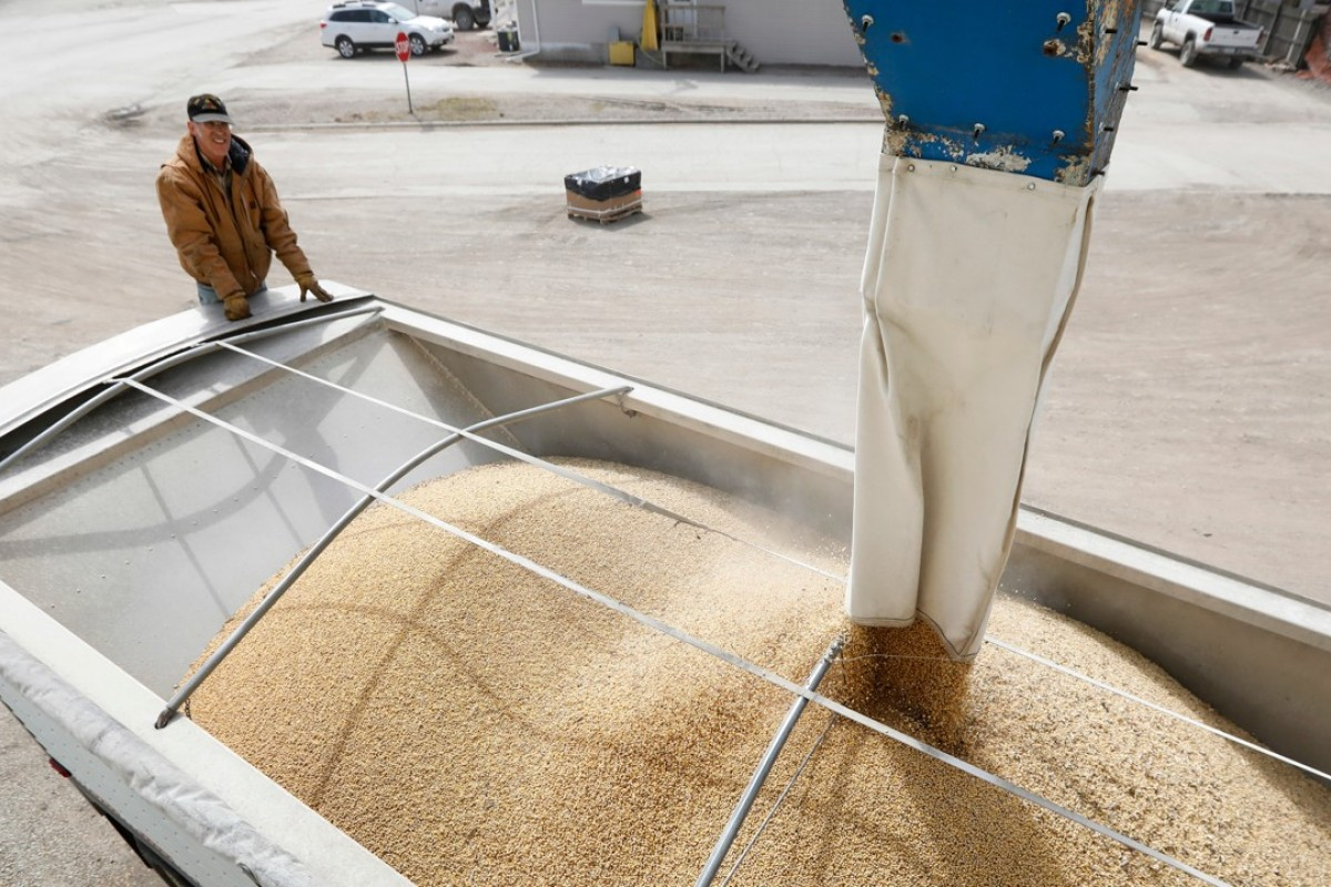 China-US trade war is making American soybean farmers