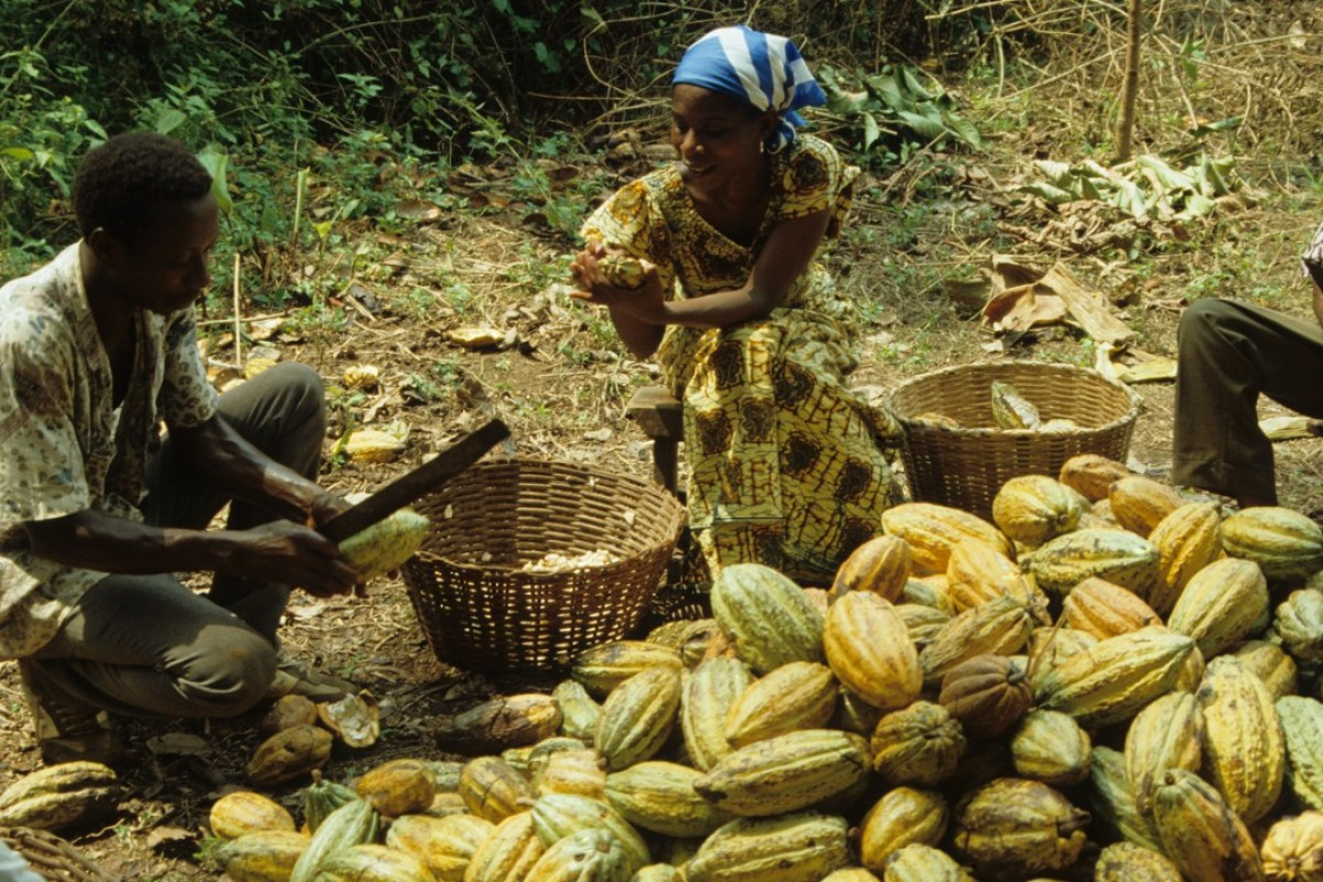 Cocoa exporter Ghana now makes its own chocolates, with a