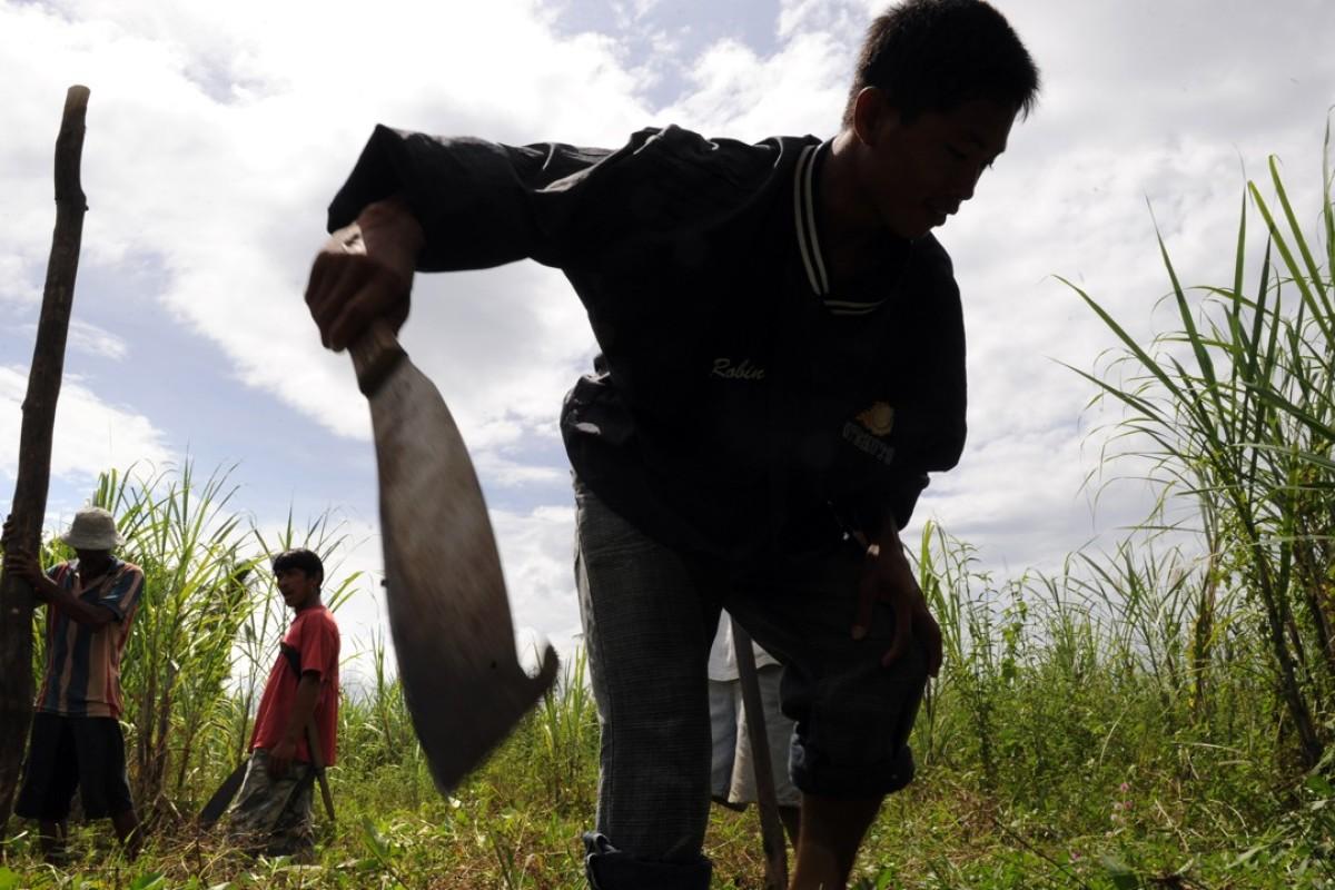 Farm massacre: gunmen kill 9 people on Philippines sugarcane