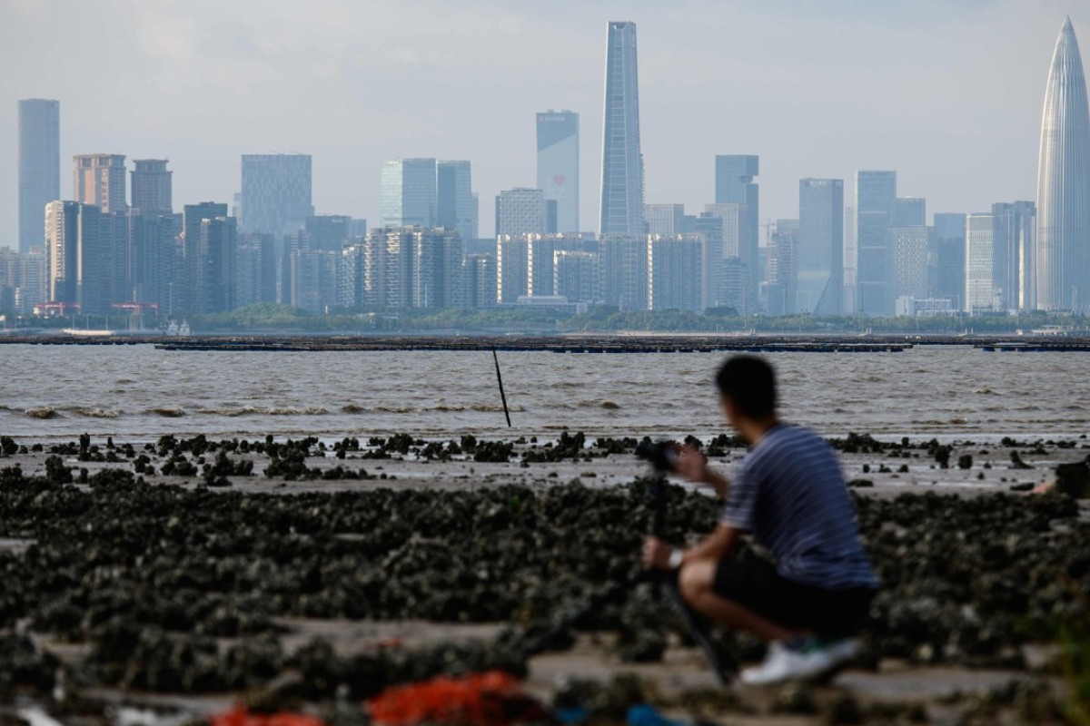 China's Silicon Valley rival 'needs market reforms, not grand plans'
