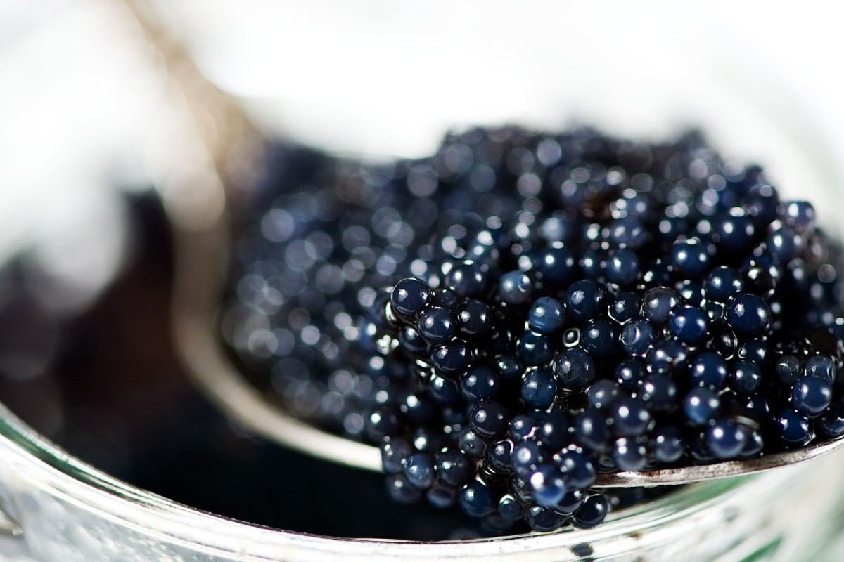How to eat caviar – hint: you get to chug vodka | South China