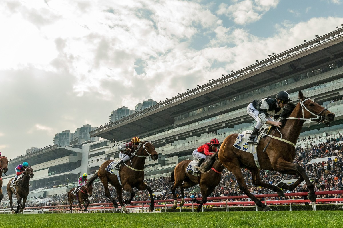 Can Exultant, a likely Citi Hong Kong Gold Cup racing