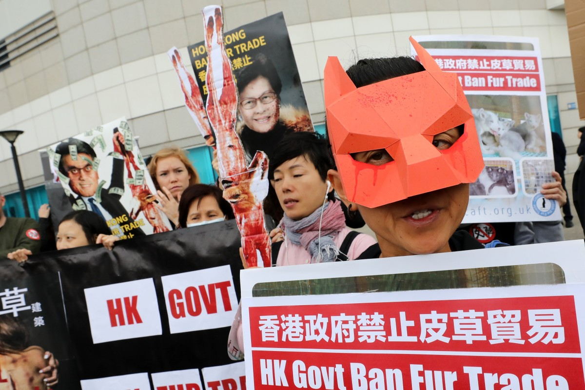Fur trade in Hong Kong: animal rights activists call on government