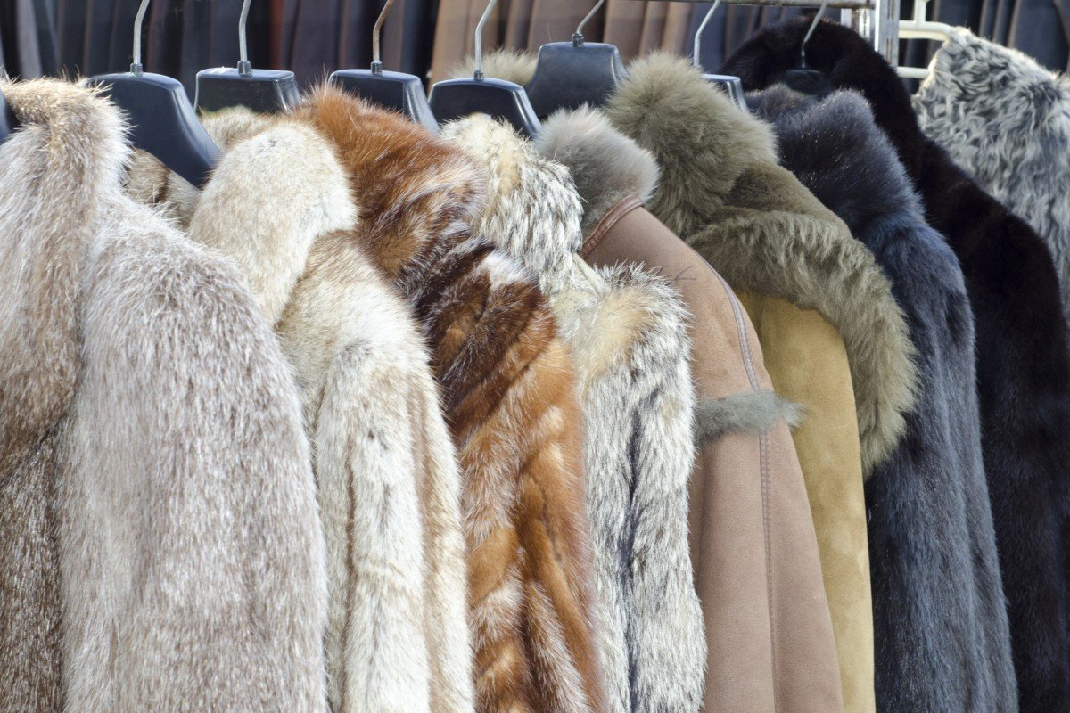 b3ea973e24 Coats made of animal fur line a store. Regrettably