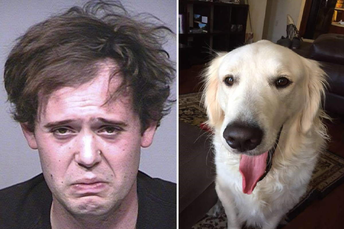 6cc3f3326f7135 Jacob Bushkin and a photo of a golden retriever believed to be his service  dog,