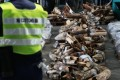 A customs officer guards the 1,209 elephant tusks shipped to Hong Kong in two containers from Kenya and Tanzania. Photo: Sam Tsang