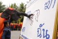 """An elephant in Pattaya yesterday creates a painting depicting a shot elephant with words in Thai reading """"Stop Killing Me"""". Photo: EPA"""