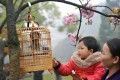 It is time to stop keeping birds as pets in cages. Photo: Xinhua