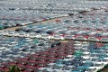 Cars in Tianjin that are distributed by FAW. Photo: Xinhua