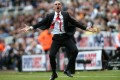 Sunderland coach Paolo Di Canio cheers his side's opening goal.