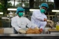 An official with the Food and Environmental Hygiene Department holds a live chicken as another handles a blood sample for testing. Photo: Bloomberg
