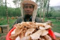 Bee-keeper Ma Fuhai seen in a file photo harvesting real honey in the Qinghai Lake area. Photo: Reuters