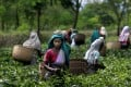 The majority of Indian women are still employed in the agricultural and construction sectors. Photo: AP
