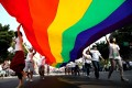 Members of Taiwan's lesbian, gay, bisexual and transgender community carry a rainbow-coloured flag at the 60,000-strong Gay Pride March to demand marriage rights in Taipei last month. Photo: EPA