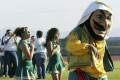 The hook-nosed, snarling mascot that is the centre of controversy at Coachella Valley High School in California. Photo: AP