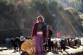 Bishnu Buda balances her household work with her role as a primary health-care provider in Nepal's Jumla district. Photo: Bibek Bhandari