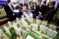 Buyers look at models of new residential developments for sale in Beijing. Home prices in Beijing and three other major cities rose more than 20 per cent in November. Photo: EPA