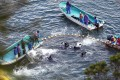Fishermen in wetsuits hunt dolphins at a cove in Taiji, western Japan. Photo: Reuters