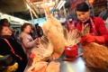 Vendor selling live chickens from local farms at the Kowloon City Market, after the end of a three-week ban on sales. Photo: Sam Tsang