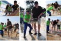 Yao Ming is seen releasing rescued green sea turtles into the ocean from a beach in Sanya. Photo: Sea Turtles 911