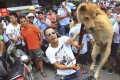 A vendor tortures a dog in front of animal rights activists in an attempt to demand money for the dog in Yulin city. Photo: AP