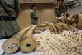 Customs officials at Chek Lap Kok airport with some of the HK$7.9 million worth of illegal ivory that was seized from 16 Vietnamese passengers on June 10. The ivory was hidden in luggage on a flight heading for Cambodia. Photos: Corbis; Nora Tam; AFP