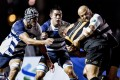 Prop Daniel Barlow and his valiant USRC Tigers team-mates couldn't find a way past Natixis HKFC in the Hong Kong Premiership on Saturday. Photos: HKRFU
