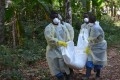 Health workers in Liberia carry the body of a person killed by Ebola. Photo: AFP