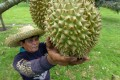 Global demand for Southeast Asia's exports of durians and rice, particularly from China, has been growing. Photo: AFP